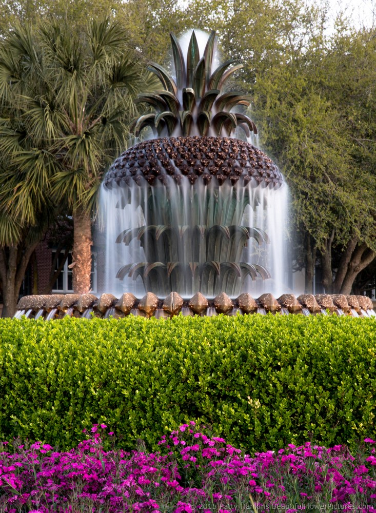 2015_09_charleston_fountain_4571