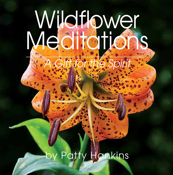 Wildflower Meditations: A Gift for the Spirit
