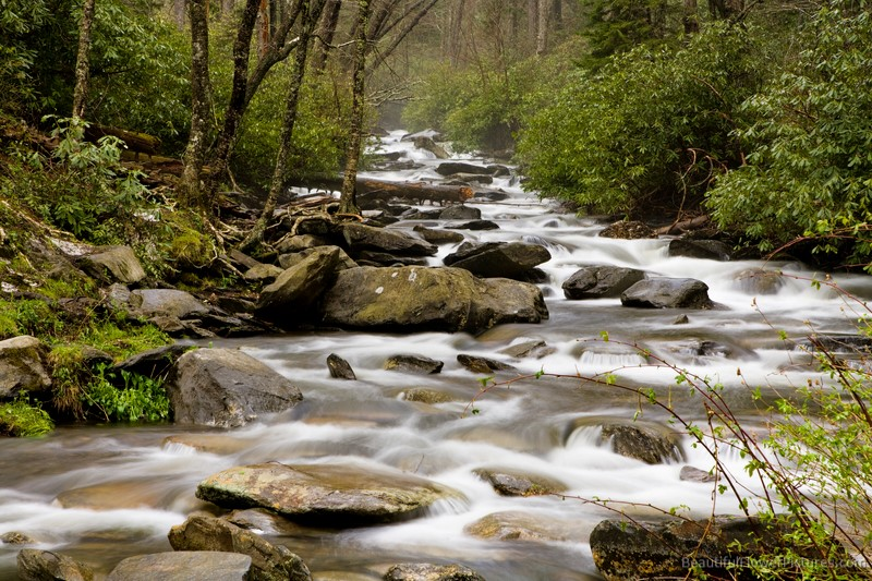 Stream in the Smoky Mountains