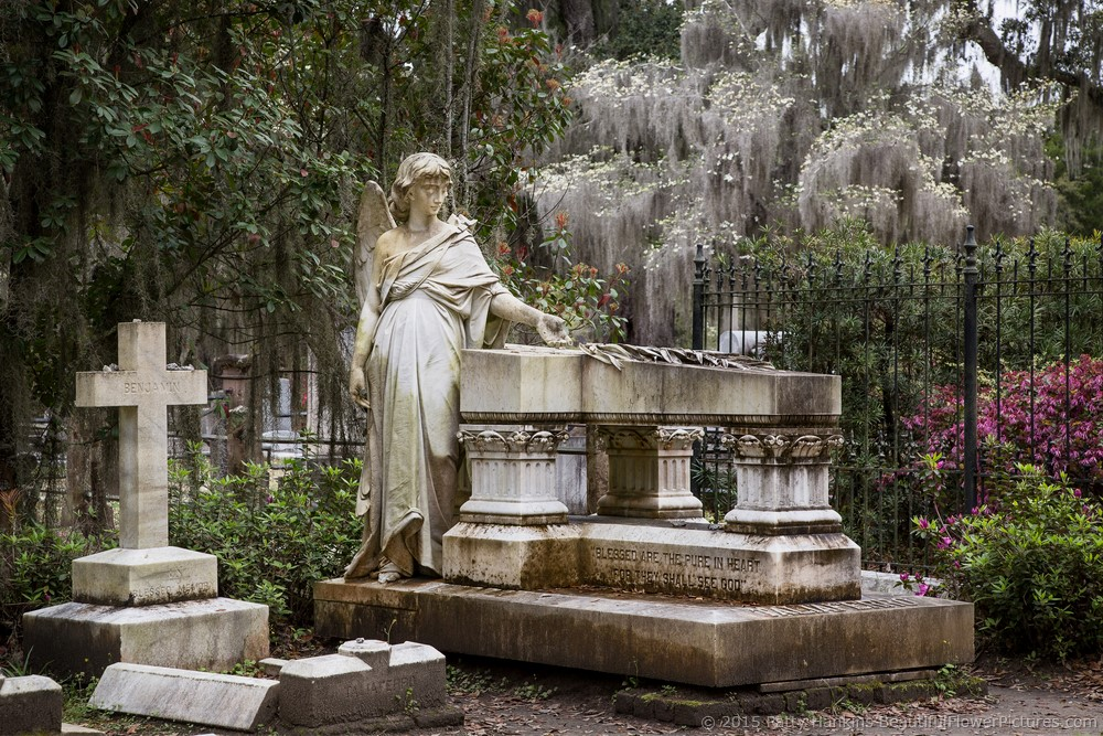 bonaventure_cemetery_3004-1