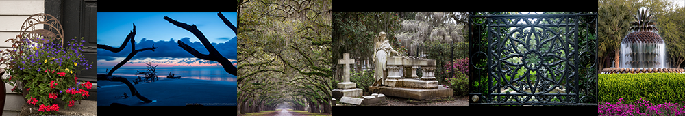 Savannah-Charleston-banner