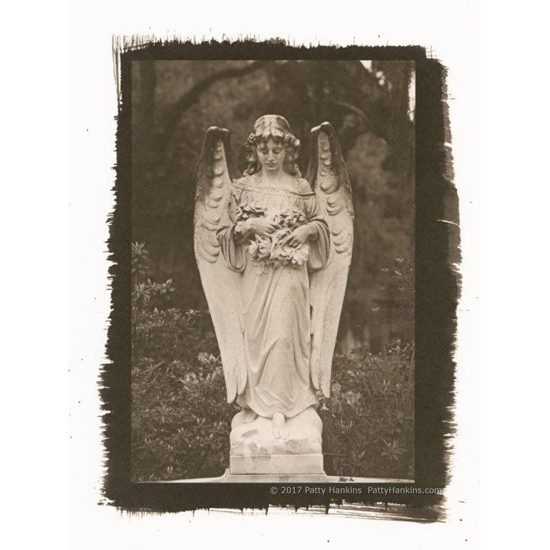 Graveyard Angel Bonaventure Cemetery Savannah Palladium Toned Kallitype