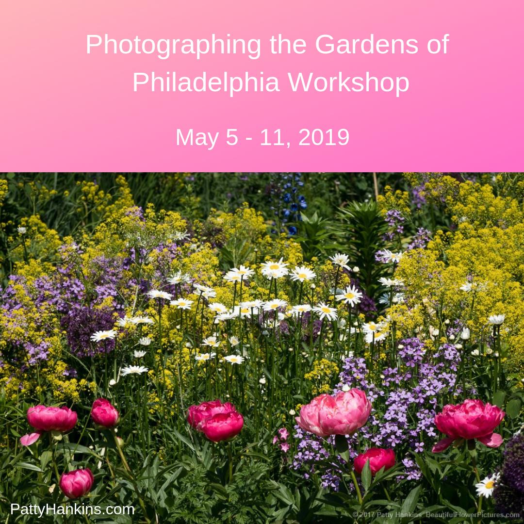 Photographing the Gardens of Philadelphia Workshop